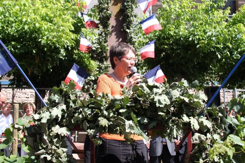 Wangen : Fête de la Fontaine le 8 juillet 2012 Piscin95