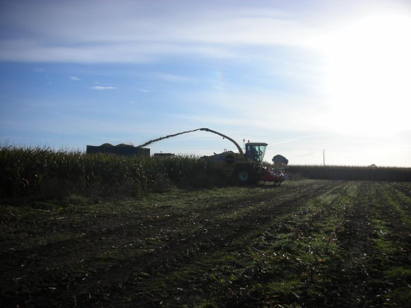Ensilage de maïs 2008 - Page 3 Dscn1217