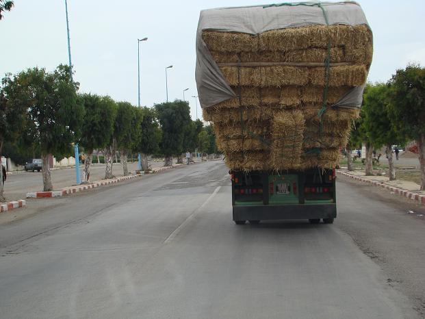 de retour du Maroc  9604 km de parcouru sans panne ( page 2 A_dsc119