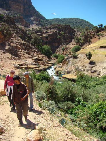 de retour du Maroc 9604 km sans panne       page 5 A_dsc222