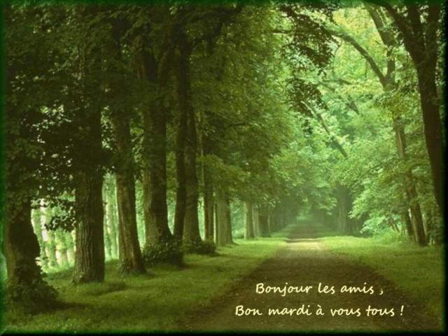 Les Bonjour , Les Bonsoir Et Les Bonne Nuit - Page 2 Mardi211