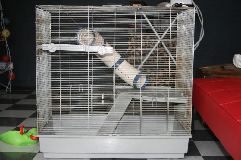 [VENDUE] cage ferplast XL à venir chercher sur lille (59) Cage10