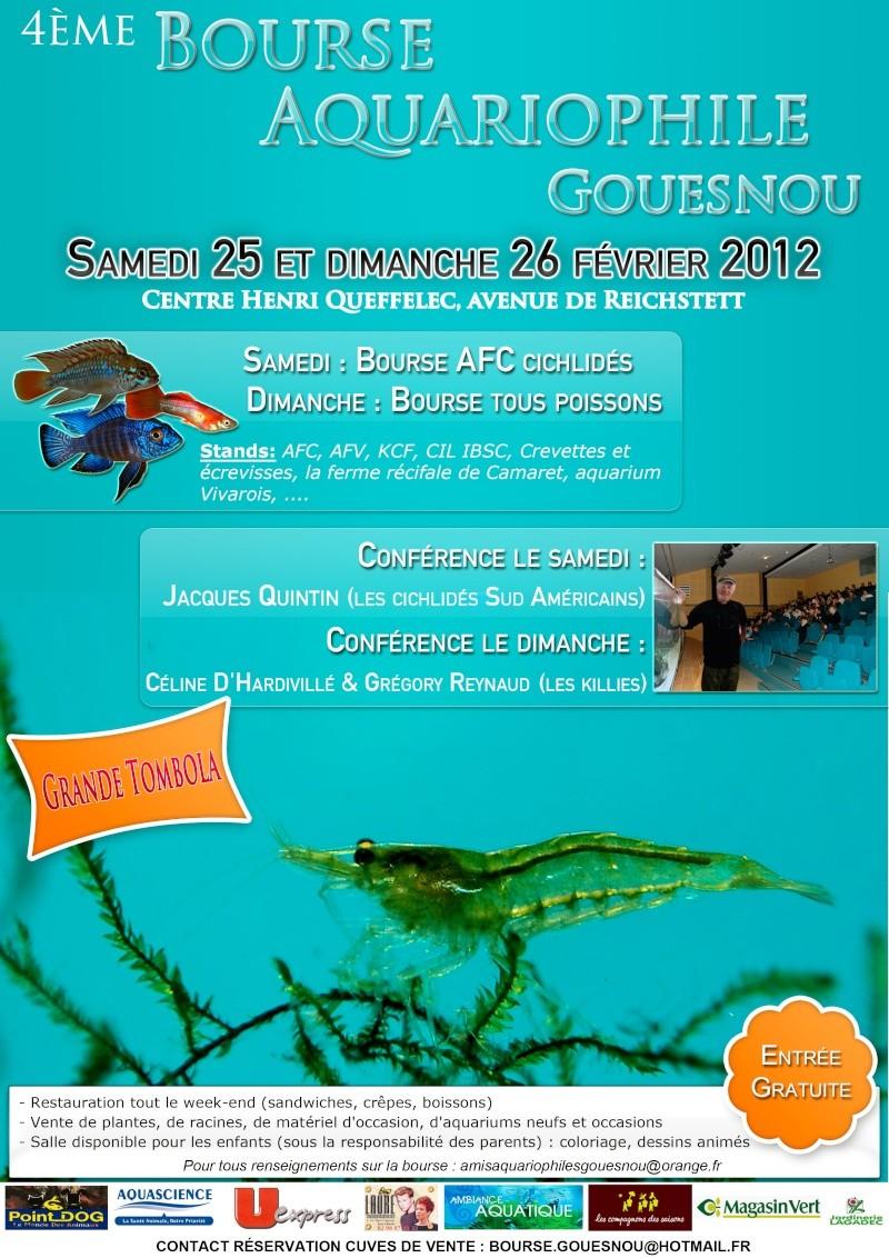 BOURSE A GOUESNOU 25 & 26 février 2012 4ème Edition  Affich10