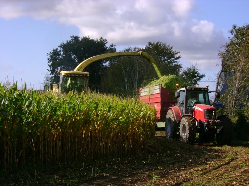 Ensilage de maïs 2008 - Page 3 Dsc04611