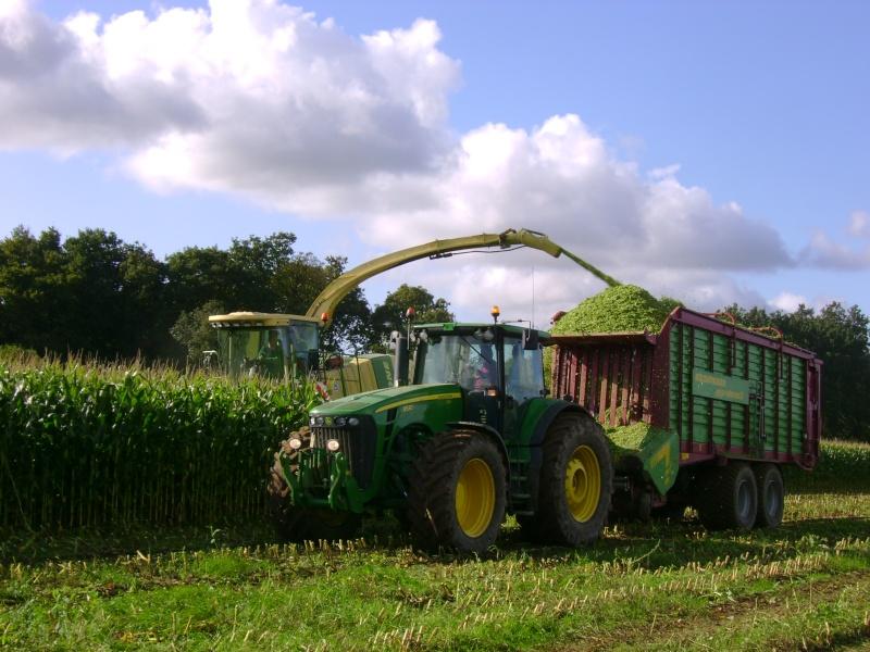 Ensilage de maïs 2008 - Page 3 Dsc04612