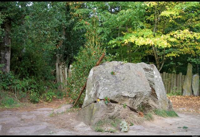 les minis de l' ABVA à la 1ère Sortie des Druides 15202510