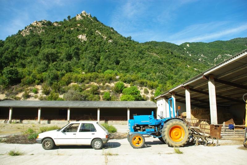Mi Super Ebro, arrastrado por mi Peugeot 205 SRD diesel. Imgp0115
