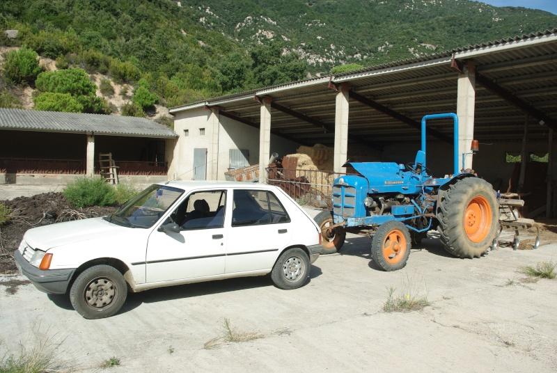 Mi Super Ebro, arrastrado por mi Peugeot 205 SRD diesel. Imgp0116
