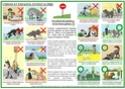 signaux - Travaux sur les signaux d'apaisement - Merci pour vos avis - Page 2 Compor11