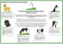 signaux - Travaux sur les signaux d'apaisement - Merci pour vos avis - Page 2 Signau14