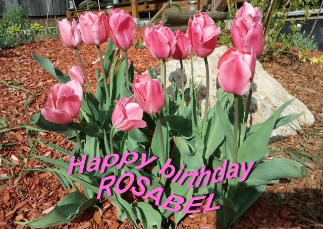 Happy birthday Rosabel 2012-019