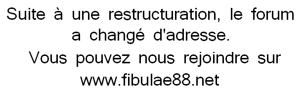 Fibule - fibula - fibulae