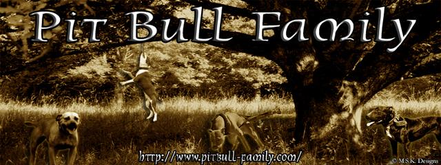 Pit Bull Family