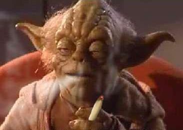 "6 principes de la philo ou du ""druidisme"" Yoda10"