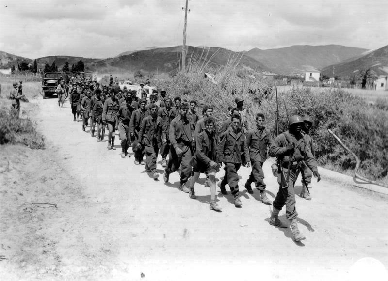 Armée Française de libération 1943-1945  : Petit guide uniformologique  Colonn10