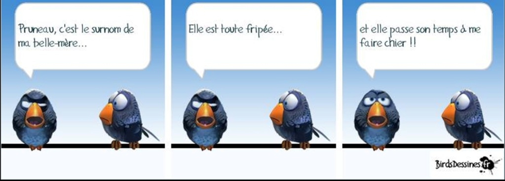 humour en images II - Page 16 0113