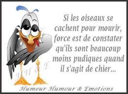 humour en images II - Page 7 0214