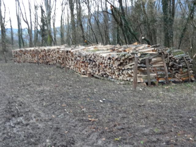 qui fait du bois ? - Page 6 Dsc01118