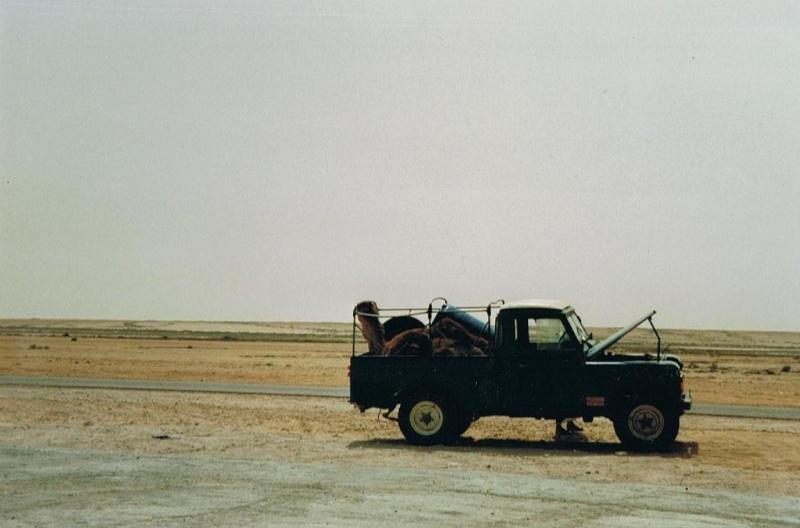 raid de l amitié maroc 1993 1er pas 4wd pour moi  01312