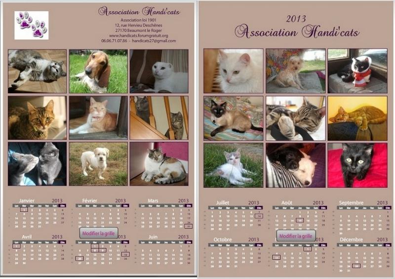 Calendriers et cartes de voeux 2013 - Page 3 Calend10