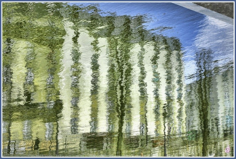 """Concours """"photo"""" du mois de mars 2012. Thème : """"Reflet sur l'eau"""" Mars1010"""