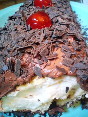 Κορμός Σοκολάτα με κρέμα τυριού 110