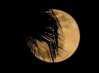 Super pleine Lune Pleine16