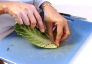 Cách tỉa lá bắp cải đẹp mà không khó 12031515
