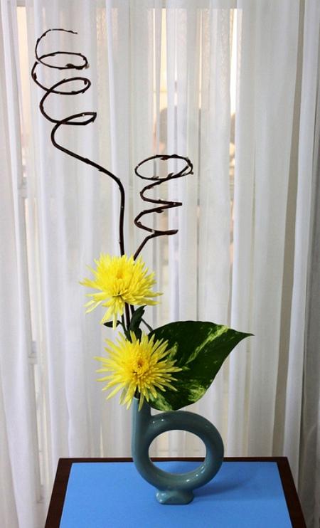 5 cách cắm hoa cúc đơn giản nghệ thuật 12060527
