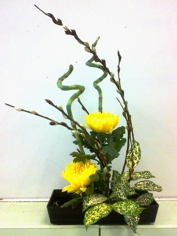 5 cách cắm hoa cúc đơn giản nghệ thuật 12060528