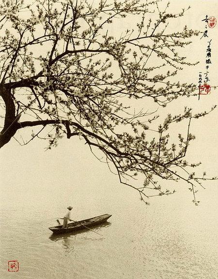 Vẻ đẹp Việt dưới ống kính nhiếp ảnh gia Trung Quốc 13200421