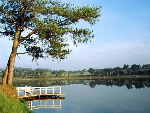 Hồ Đà Lạt Hoabtt30