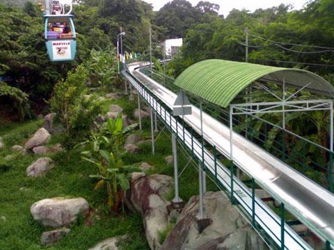 Về Tây Ninh thăm núi Bà Đen Hoabtt37