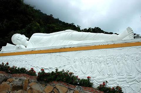 Về Tây Ninh thăm núi Bà Đen Hoabtt39