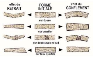 Les déformations du bois  Figure10