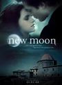 New Moon, affiches non-officielles 21690715