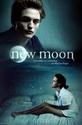 New Moon, affiches non-officielles 22471010
