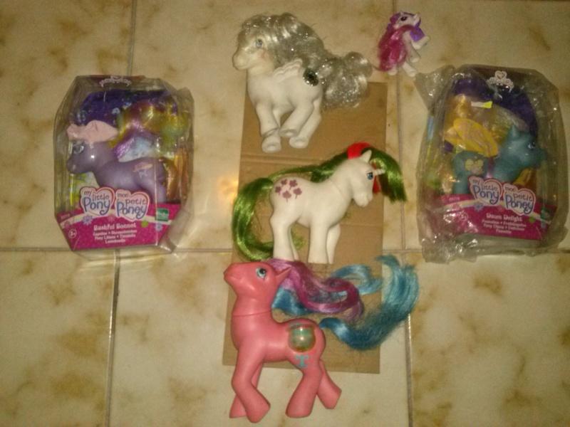 Cerco pony!!! Cam00210