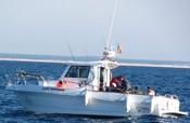 Leão Marinho Pesca Embarcada - Portal* Leaoma10