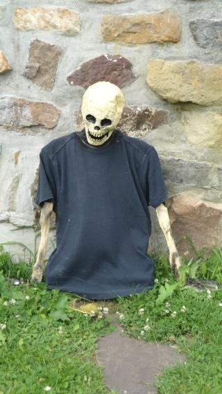 Squelette qui sort de terre Dsc00011