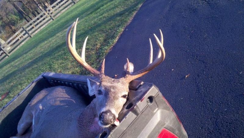 deer hunting pics 2012 Brando10