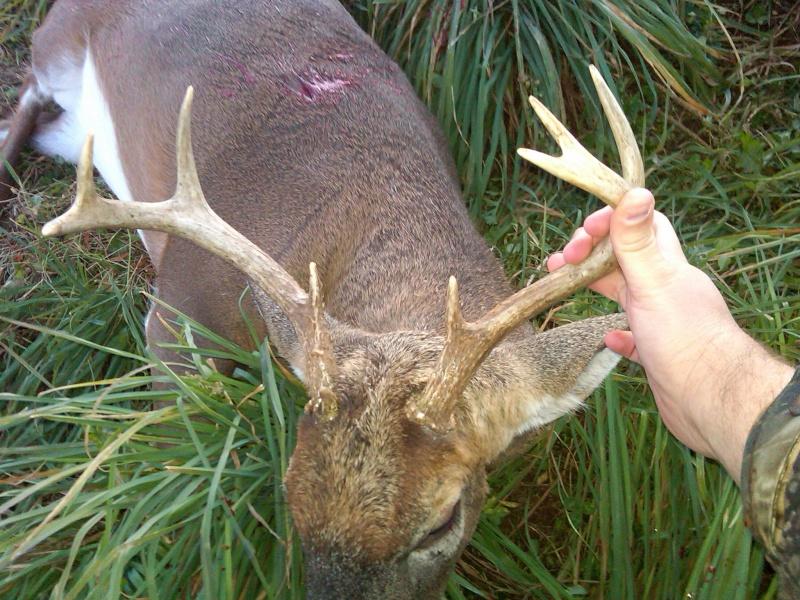 deer hunting pics 2012 Img-2045