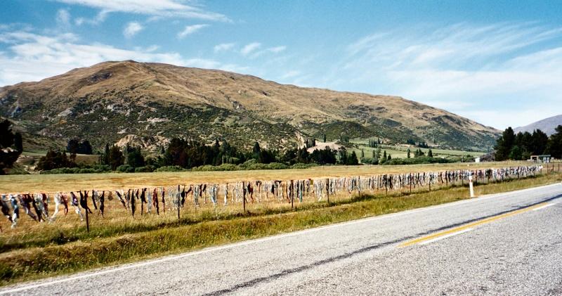 [Nouvelle-Zélande] - Clôture de soutiens-gorge de Cardrona Cardro10