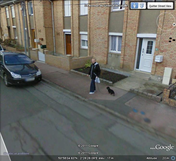 STREET VIEW:les chiens domestiques dans les cours ou en laisse dans les rues !  Teckel10