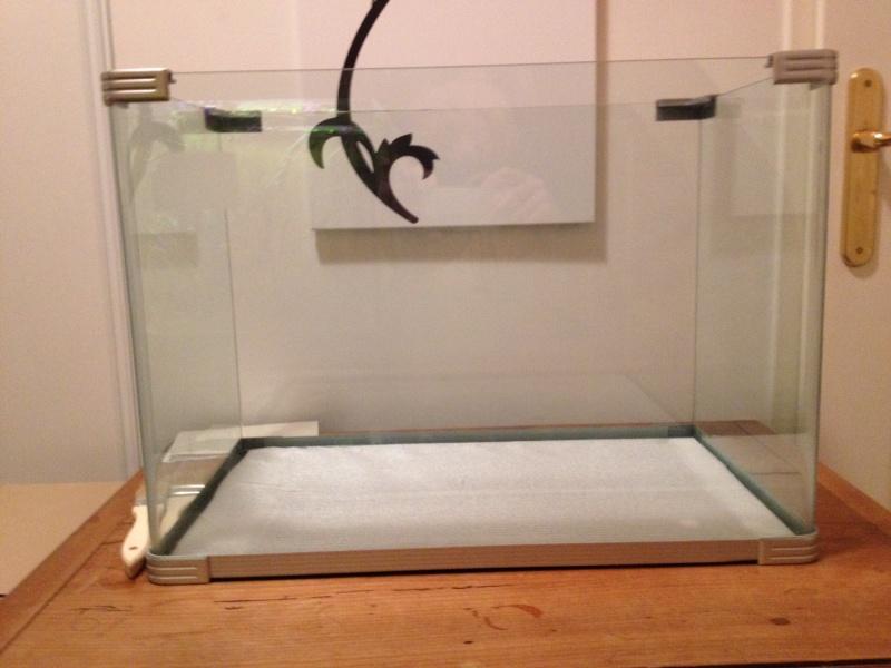 Projet aquarium micro récifal 50 - 55L Photo10
