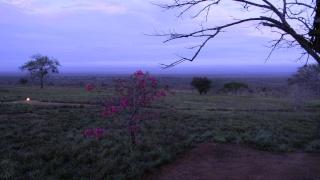 Lualenyi Camp Safari12