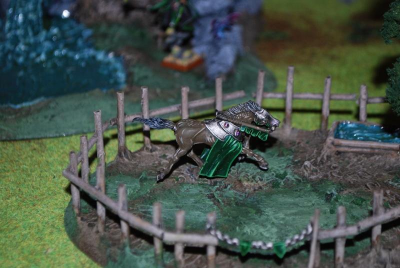 Table warhammer 2010/2011 :  Dsc_0018