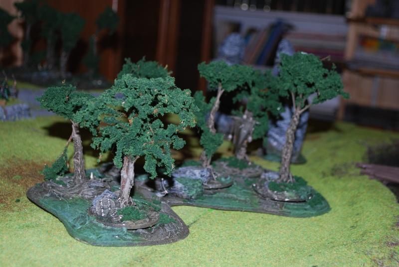 Table warhammer 2010/2011 :  Dsc_0026