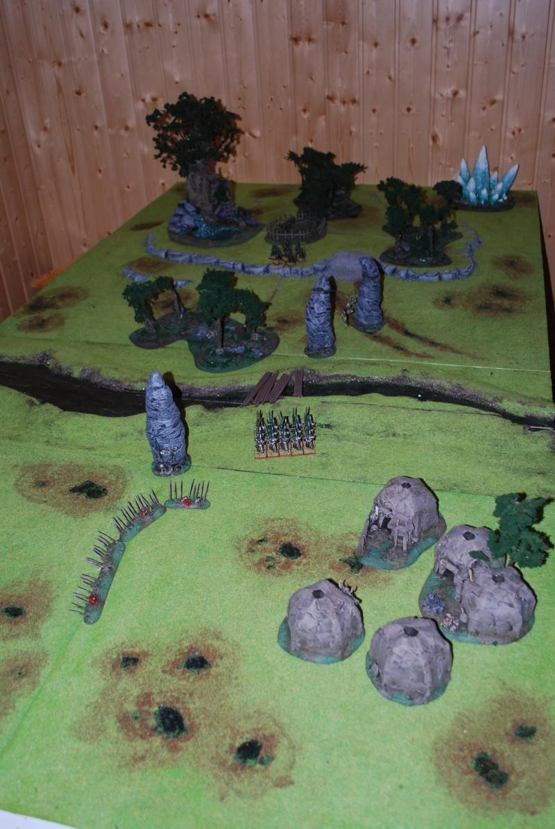 Table warhammer 2010/2011 :  Dsc_0027