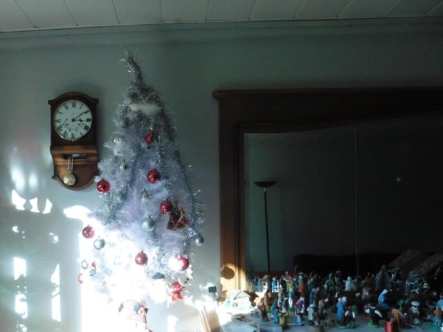 12 décembre P1030313
